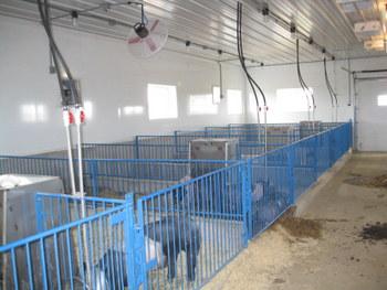 Show Barn Gates Show Stopper Equipment